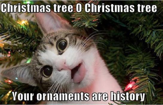 inyay/Christmas tree o Christmas tree your ornaments are history