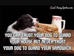 Inyay/Never trust your dog to guard your sandwich.